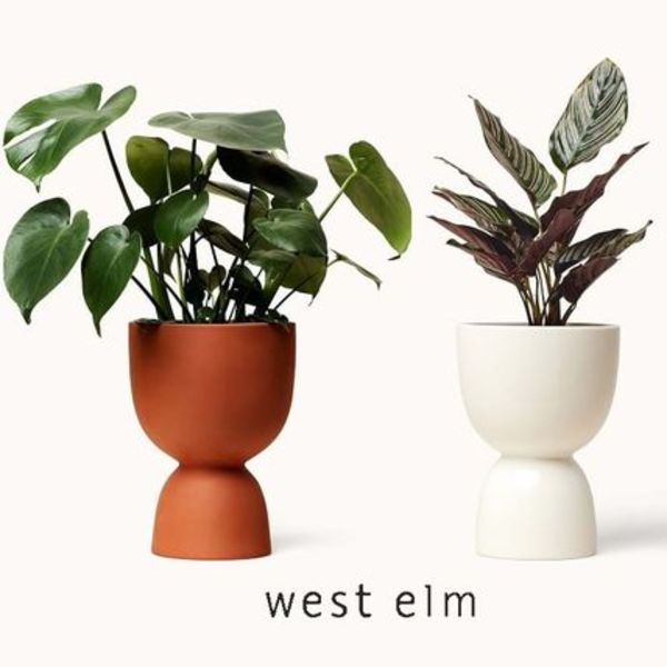 NY発【west elm】Franca NYC Stacked Planter プランター