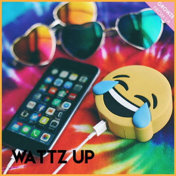 【WattzUp Power】ワッツアップパワー TEARS OF JOY 充電器