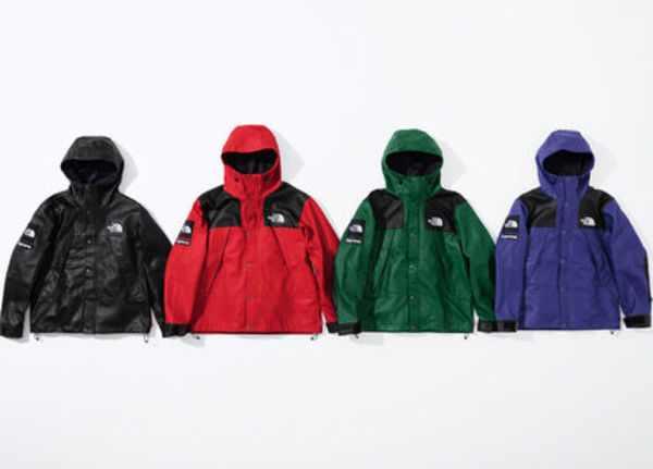 9 WEEK Supreme FW 18 The North Face  Leather Mountain Parka