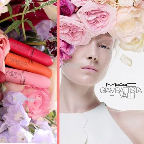 《MAC》Giambattista Valli 直営店購入+12℃保管