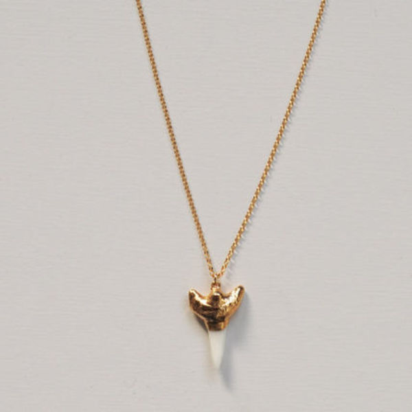 Miniture Shark Tooth Necklace[34-0036]