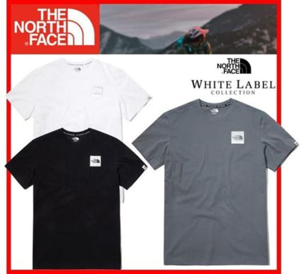★人気★THE NORTH FACE★SILVER NUPTSE V2 S/S R/TEE★3色★