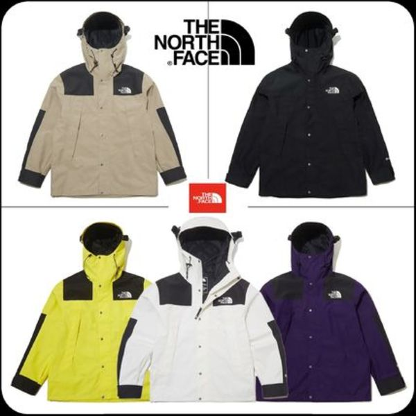 [THE NORTH FACE] ★ 20SS NEW★ ECO GTX MOUNTAIN JACKET