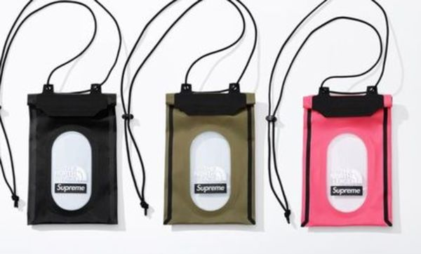 Supreme/The North Face Summit Series Outer Seam Neck Pouch