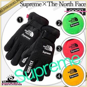 20SS /Supreme The North Face RTG Fleece Gloves 手袋 グローブ