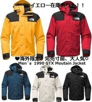 完売寸前★入手困難★THE NORTH FACE★Mountain Jacket